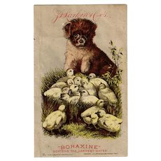 Vintage 1800's Advertising Trade Card - Larkin Company Boraxine - Puppy and Baby Chicks