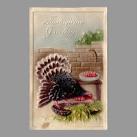 Vintage Embossed Turkey Thanksgiving Postcard – Made in Germany