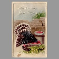 Vintage 1911 Embossed Turkey Thanksgiving Postcard – Made in Germany