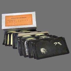 Vintage Keystone Stereoscopic Cards with Visual Skill Eye Tests