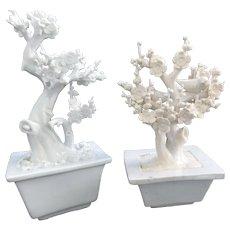 Chinese Dehua Blanc de Chine Prunis Trees