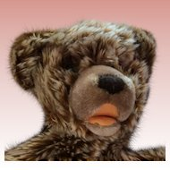 Steiff Zotty Bear. 1970 Pajama Bag Style. 5910/30