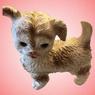 Edward Mobley Dog