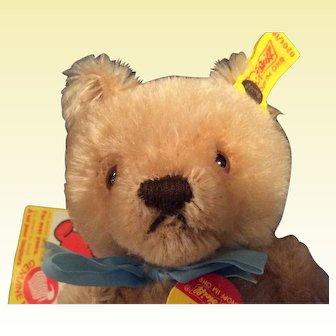 7 1/2 Steiff Teddy Bear