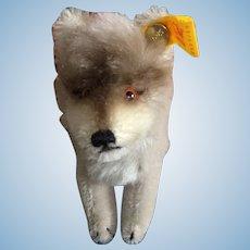 Small Steiff Wolf
