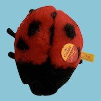 Steiff Cappy the Lady Bug