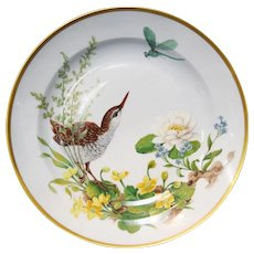 "Kaiser Floralie 12"" Porcelain Gold Rimmed Plate Bird w/Dragon Fly W Germany"