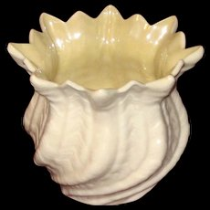 Irish Belleek Sea Shell Vase