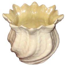 Irish Belleek Sea Shell Vase
