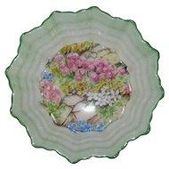 Shelley Rock Garden Chintz Small Scalloped Dish