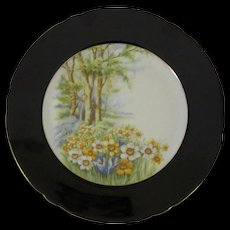 Shelley Porcelain 'Daffodil Time' Cake Plate, Black Border