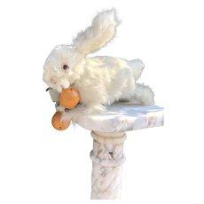 Lovely Mechanical Rabbit Toy