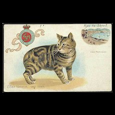 """Cat with no Tail""  (1909) - Red Tag Sale Item"