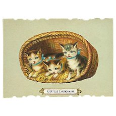 """Cute Kittens in Basket""  (1910')"