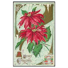 """Bright red Christmas Flower""  (1914)"