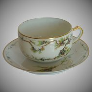 Beautiful Haviland & Co. Limoges France Coffee Cup and Saucer