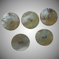 5 Natural Mother of Pearl  Shell Buttons