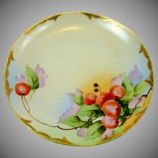 Hand Painted Cherries  1960's Small Plate