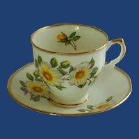 Vintage Salisbury Bone China  English Tea Cup