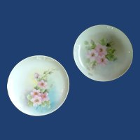 Set of 2 Hand Painted Luncheon Plates Rynne China