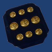 Brass USA Navy Academy Scientia Buttons