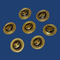 Beautiful Seven Brass Domed Eagle Buttons