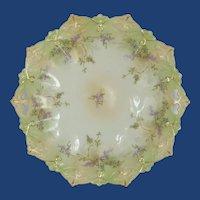 MZ Austria Porcelain Dish Plate