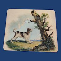 Ambiguous Illusion Dog and Cats Lithograph