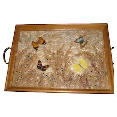 Vintage Butterfly Serving Tray