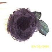 Victorian  Aubergine  Rose
