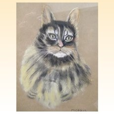 """Pastel of """"Her""""  MORRIS The Cat By Elise S Pendleton..19 x 15"""