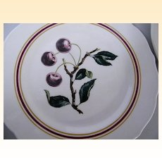 "Syracuse..Restaurant China CHERRY BRANCH Dinner Plates..10.5""..Border & Scalloped Edges..Barely Used"