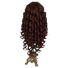 Splendiferous Brunette Antique Human Hair Doll Wig for French or German Bisque with 10 - 11.5 inch HC