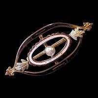 Edwardian Era Brass and Enamel Pin