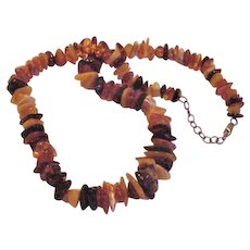 Multi Shades of Genuine Amber Necklace