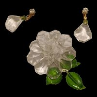 Clear Lucite Pin and Earrings