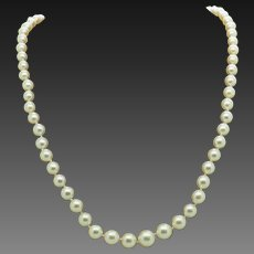 """14K White Gold Clasp Graduated 7mm-4mm Natural Freshwater Pearl Necklace-15"""""""
