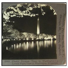 Cherry Blossom Time in Washington D.C. - Keystone Stereo View