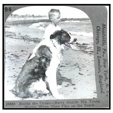 A Boy and His Dog - Keystone Stereo View