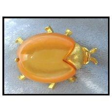 Beauteous Bug Pin