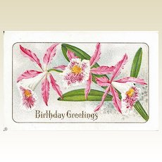 Birthday Greetings Postcard with Orchids