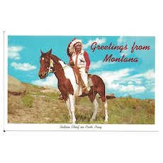 Indian Chief on Pinto Pony Postcard - Greetings from Montana
