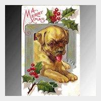 Christmas Dog Series Postcard