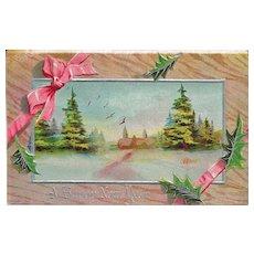 Winsch New Year Postcard Country Scene
