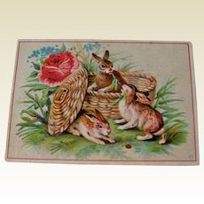 Vintage Advertising Card / Rabbits in Basket / Trade Card / Collectible Trade Card / Vintage Trade Card / Vintage Advertising