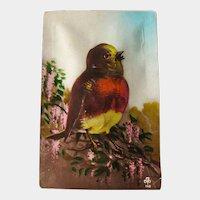 Squeeze Me Bird Postcard / Squeaking Postcard