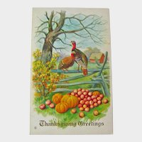 Thanksgiving Greetings Postcard Turkeys on Fence - Collectible Postcard