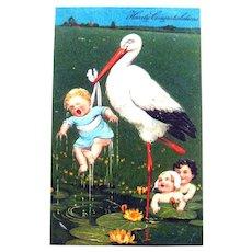 Stork Selecting Baby to Deliver / Stork Postcard