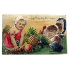 Thanksgiving Postcard Felt Turkey / Child / Fruit / Vintage Postcard