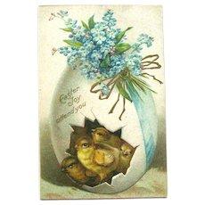 Easter Postcard Chicks in Egg / German Flowers